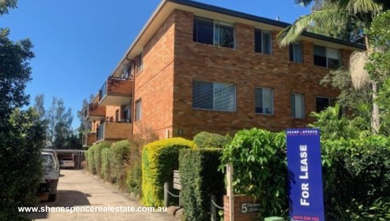 Manly Vale Unit For Lease real estate